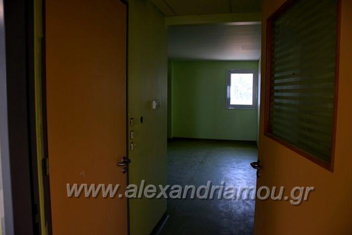 alexandriamou.gr_piogkas2020DSC_0680