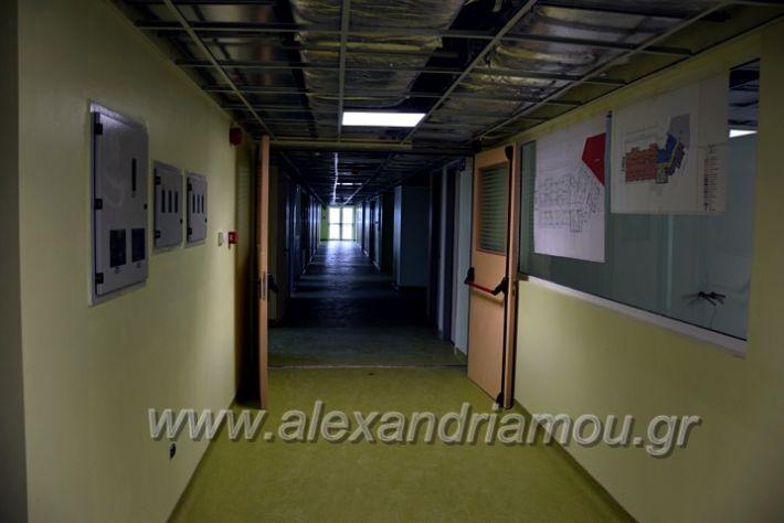 alexandriamou.gr_piogkas2020DSC_0684