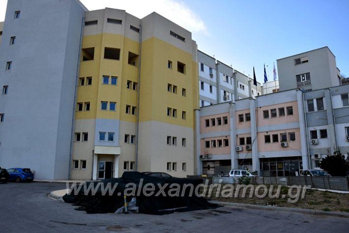 alexandriamou.gr_piogkas2020DSC_0689