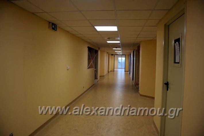 alexandriamou.gr_piogkas2020DSC_0710