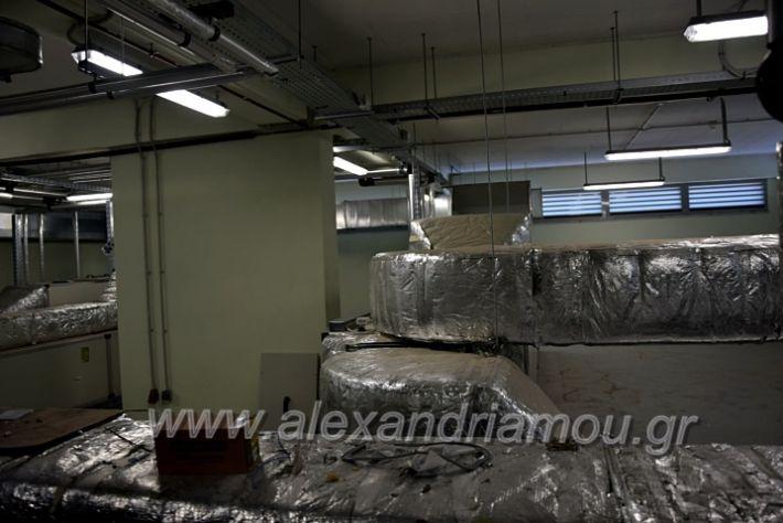 alexandriamou.gr_piogkas2020DSC_0721