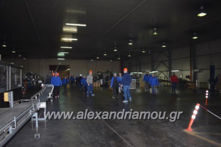 alexandriamou_pirosbestikivenus2019003