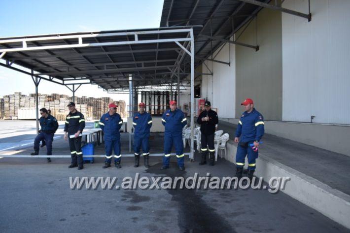 alexandriamou_pirosbestikivenus2019004
