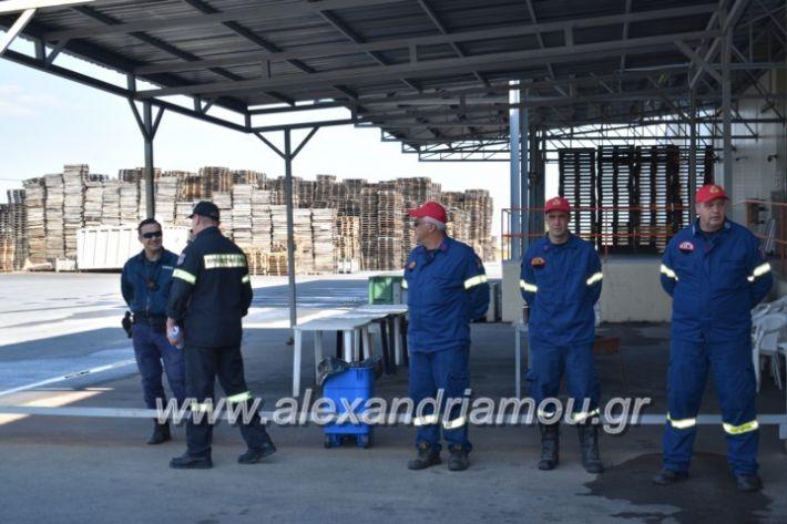 alexandriamou_pirosbestikivenus2019006