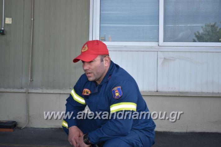 alexandriamou_pirosbestikivenus2019011