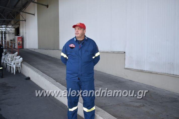 alexandriamou_pirosbestikivenus2019014