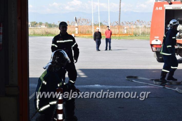 alexandriamou_pirosbestikivenus2019036