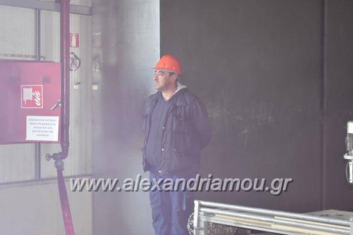 alexandriamou_pirosbestikivenus2019038