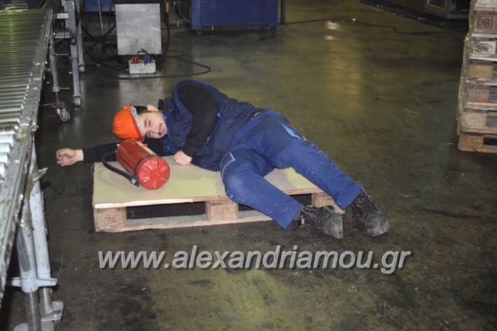 alexandriamou_pirosbestikivenus2019043