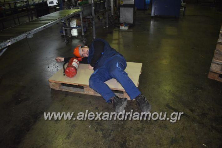 alexandriamou_pirosbestikivenus2019048