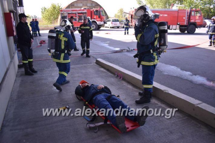 alexandriamou_pirosbestikivenus2019058