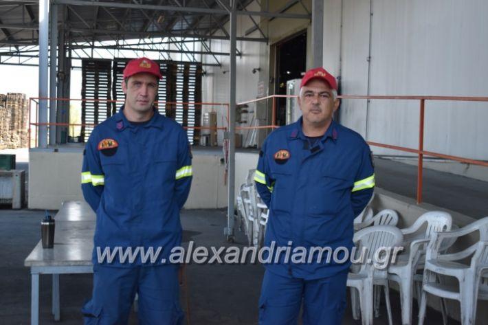 alexandriamou_pirosbestikivenus2019069