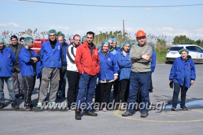 alexandriamou_pirosbestikivenus2019086