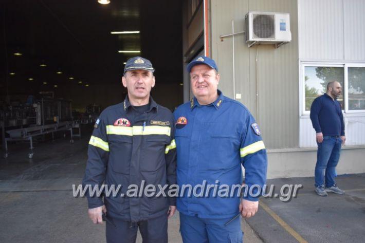 alexandriamou_pirosbestikivenus2019092
