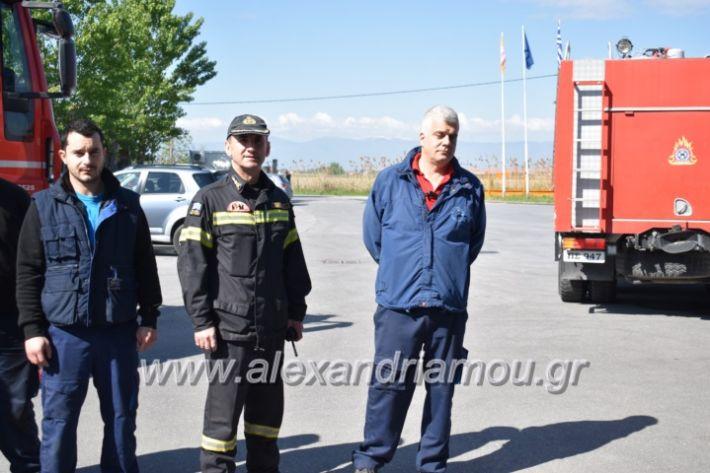 alexandriamou_pirosbestikivenus2019132