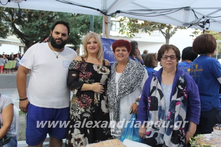 alexandriamou.gr_pita062019116