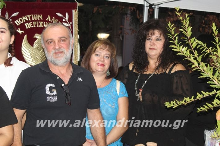 alexandriamou.gr_pita062019312