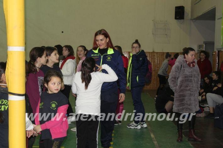 alexandriamou.gr_gaspitavolley20001