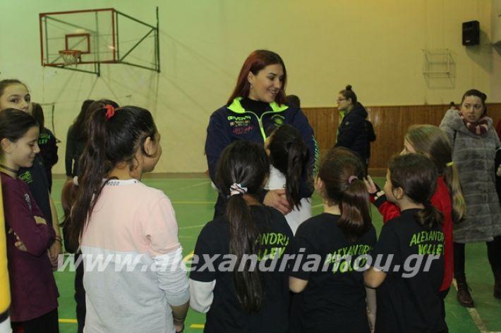 alexandriamou.gr_gaspitavolley20003