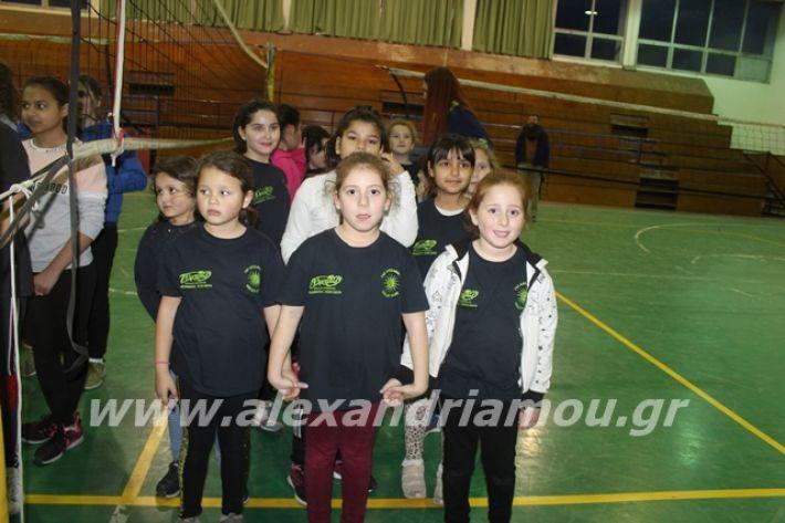alexandriamou.gr_gaspitavolley20009