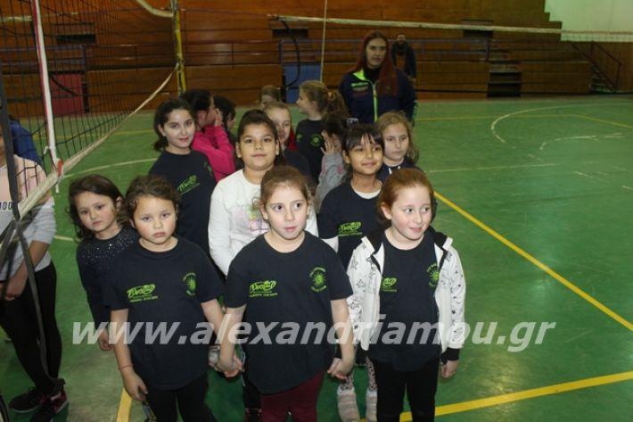 alexandriamou.gr_gaspitavolley20010