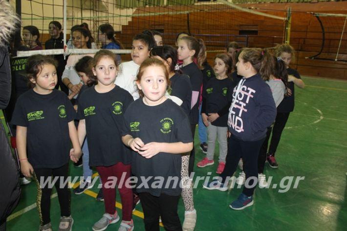 alexandriamou.gr_gaspitavolley20013