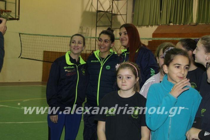 alexandriamou.gr_gaspitavolley20019