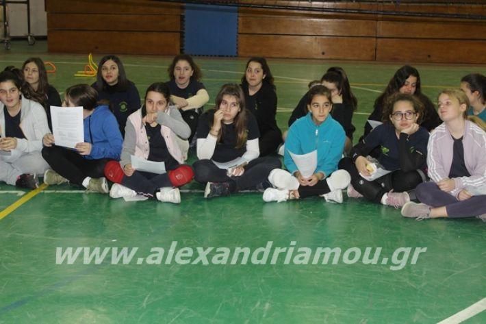 alexandriamou.gr_gaspitavolley20082