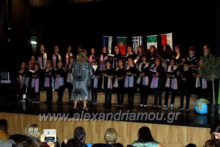 alexandriamou.gr_platierasmusmIAnthiIMG_0271