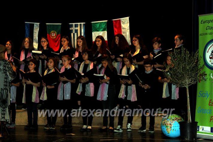 alexandriamou.gr_platierasmusmIAnthiIMG_0272