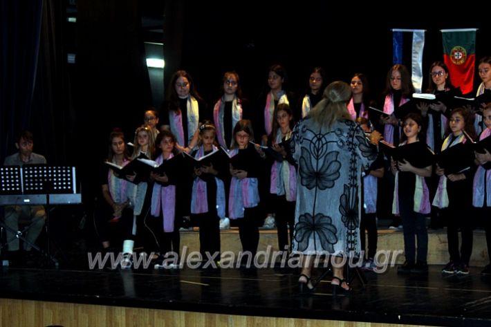 alexandriamou.gr_platierasmusmIAnthiIMG_0273