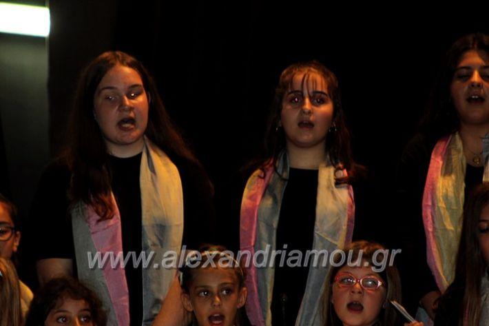 alexandriamou.gr_platierasmusmIAnthiIMG_0275