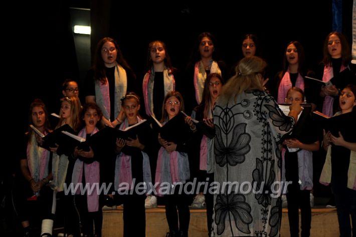 alexandriamou.gr_platierasmusmIAnthiIMG_0279