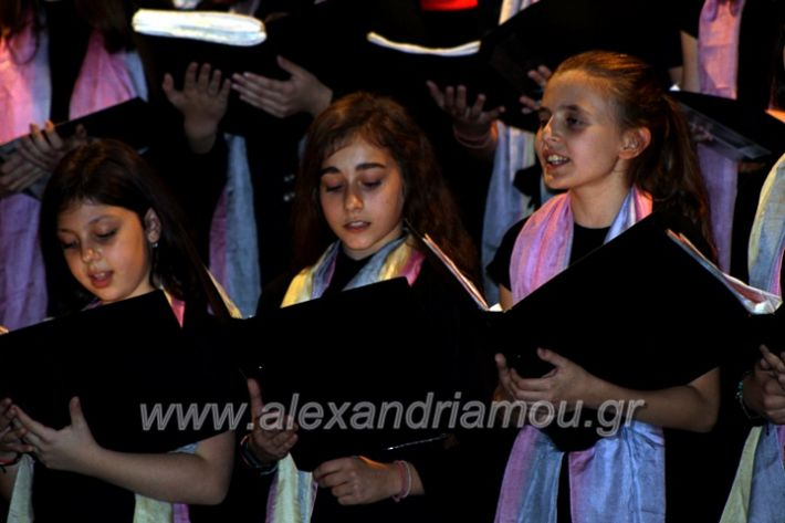 alexandriamou.gr_platierasmusmIAnthiIMG_0280