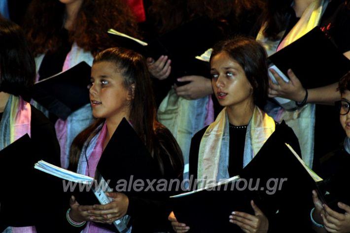 alexandriamou.gr_platierasmusmIAnthiIMG_0282