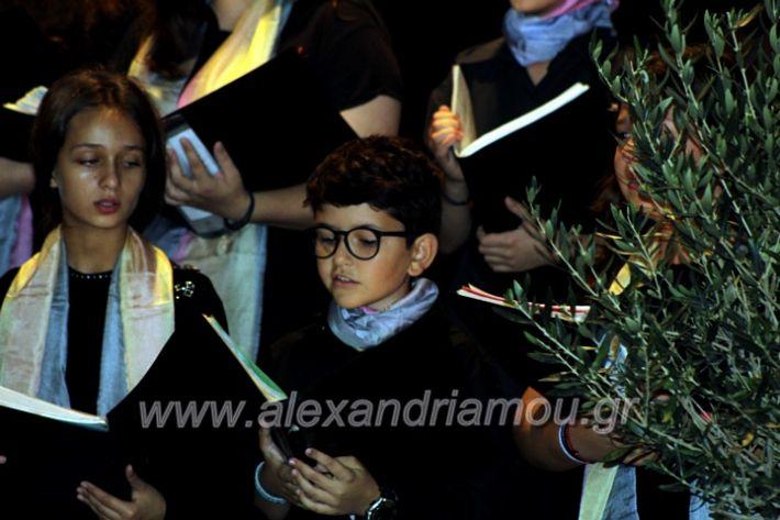 alexandriamou.gr_platierasmusmIAnthiIMG_0283