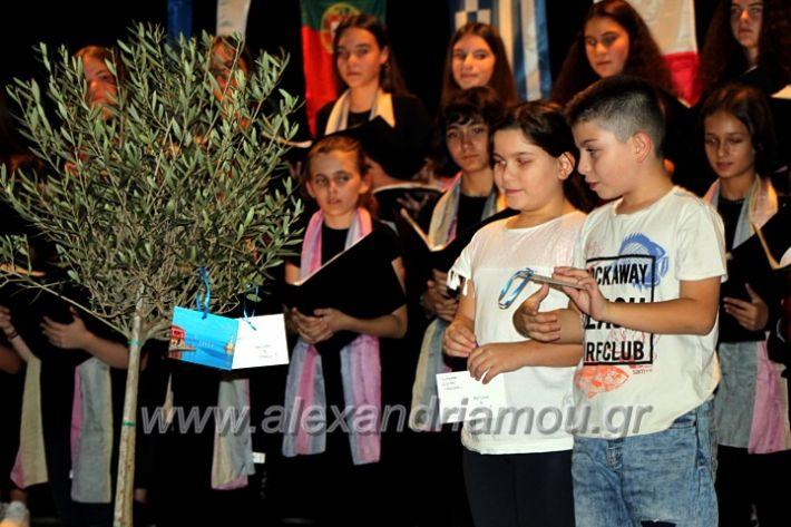 alexandriamou.gr_platierasmusmIAnthiIMG_0336