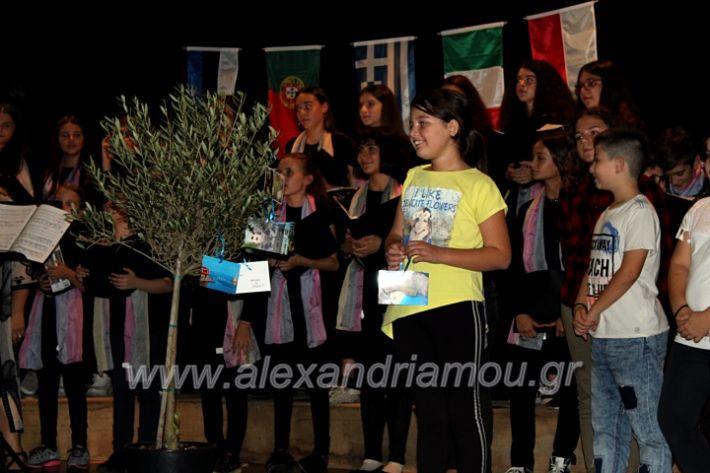 alexandriamou.gr_platierasmusmIAnthiIMG_0345