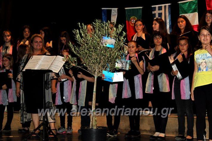 alexandriamou.gr_platierasmusmIAnthiIMG_0347