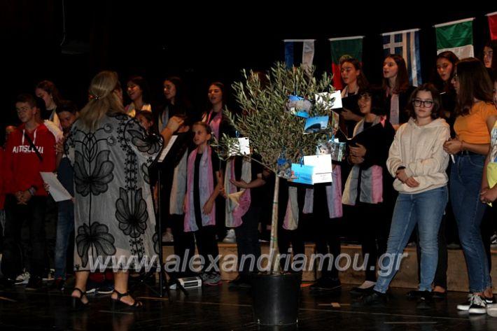 alexandriamou.gr_platierasmusmIAnthiIMG_0378