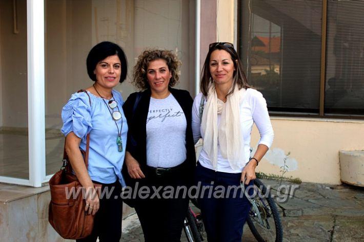 alexandriamou.gr_platierasmusproiIMG_0007