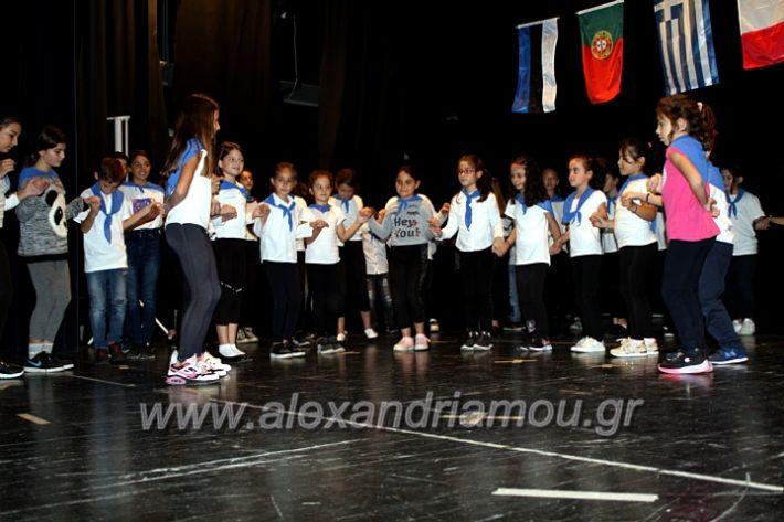 alexandriamou.gr_platierasmusproiIMG_0172