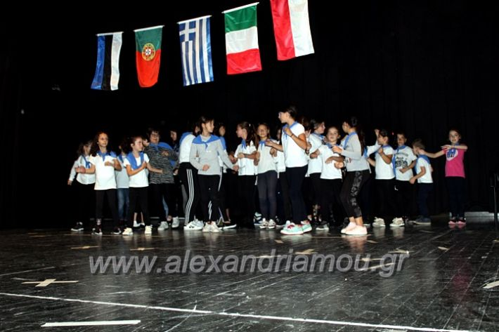alexandriamou.gr_platierasmusproiIMG_0194