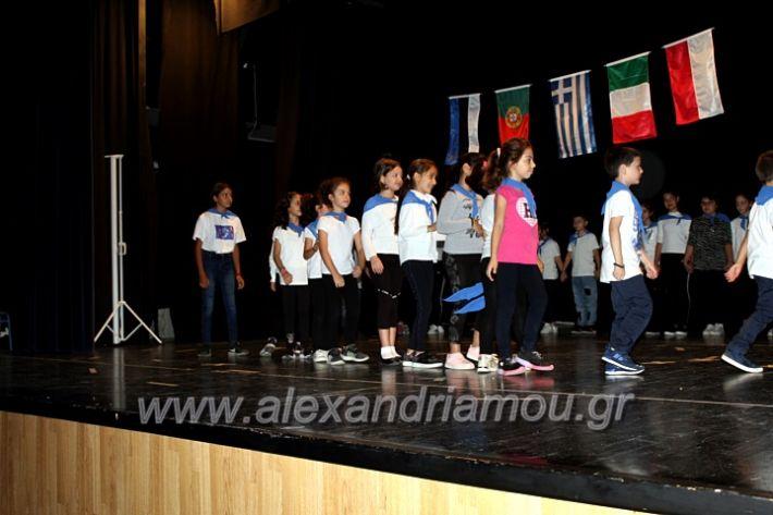 alexandriamou.gr_platierasmusproiIMG_0202