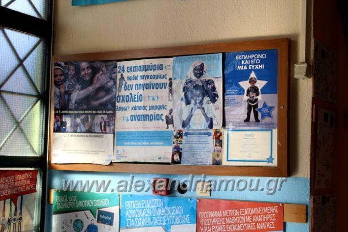 alexandriamou.gr_platiworkshopIMG_0399