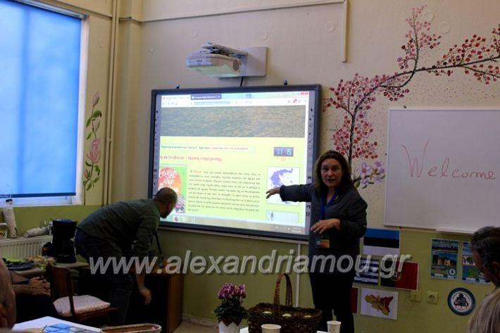 alexandriamou.gr_platiworkshopIMG_0469