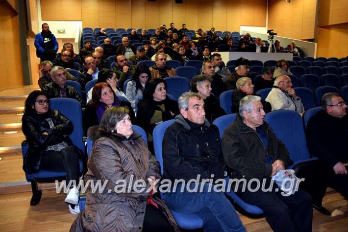 alexandriamou.gr_platu2020vDSC_0172