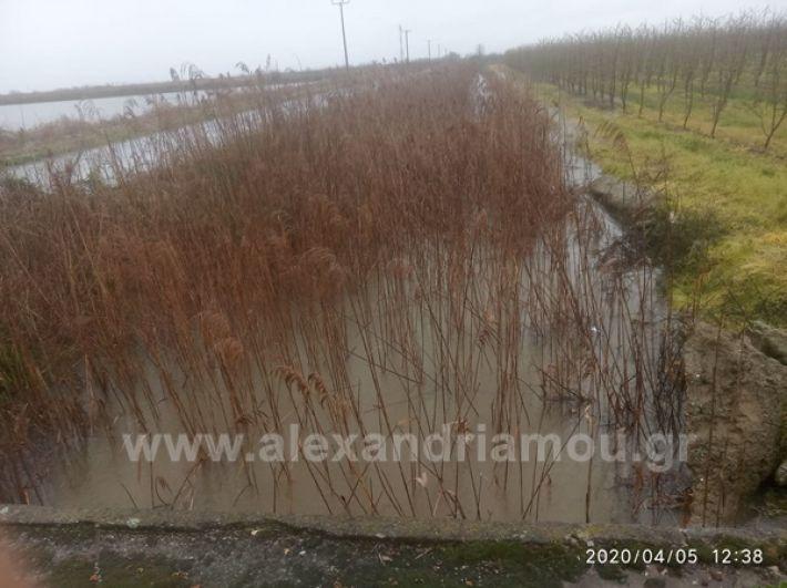 www.alexandriamou.gr_plimires202092042460_1823133594485724_6783399582693851136_n