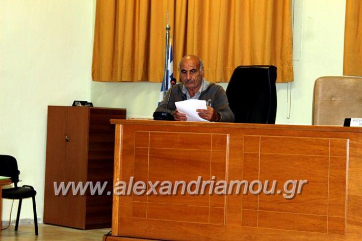 alexandriamou.gr_dimsink2019IMG_9921