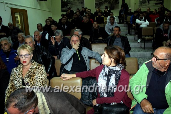 alexandriamou.gr_dimsink2019IMG_9948